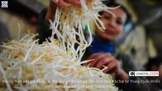 Những Món Ăn Cực Thối Và Bẩn Đến CỨT Cũng Phải Chào Thua Của Trung Quốc