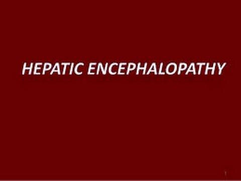 Essay zum Thema portale Hypertension