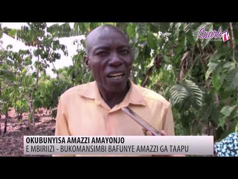 E Mabirizi mu Bukomansimbi banfunye amazzi ga taapu