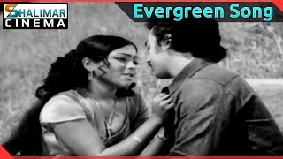 Evergreen Hit Song of the day || Bhale Bhale Mogaadivoy Video Song || shalimarcinema