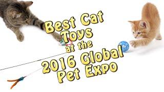 Best Cat Toys 2016