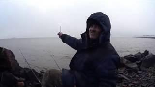 Рыбалка в сестрорецке на заливе 2020