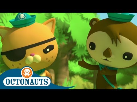 Octonauts - Mysteries of the Jungle | Triple Special | Cartoons for Kids