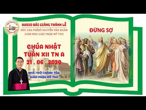Đức Cha Phêrô suy niệm CN XII TN A: ĐỪNG SỢ