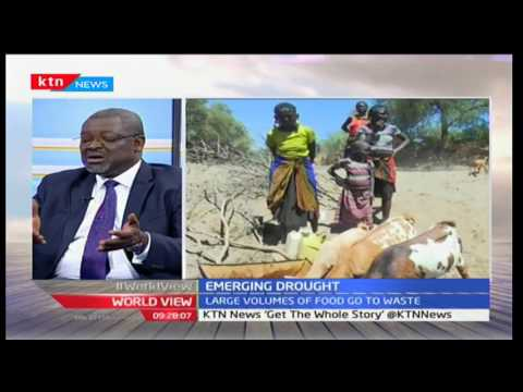World View: Managing the Harvest with Mamadou Biteye 18/1/2017