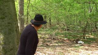 preview picture of video 'Geheimnisse des Pfälzer Waldes - Teil 5 - Das Hügelgräberfeld'