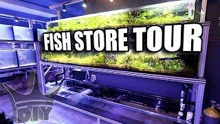 Aquarium fish store tours in NYC
