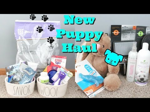 My Workout Split New Puppy Haul Meggan Grubb Video