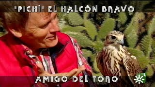 """PGM 489 EL HALCON """"PICHI"""" Amigo De Los Toros Bravos LORA SANGRÁN"""