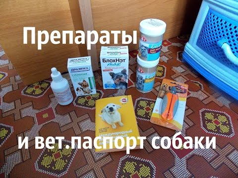 Возбудитель для женщин купить в аптеке нижний