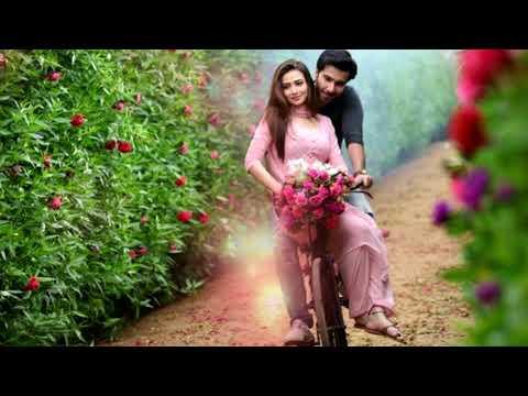 Смотреть онлайн фильм дамское счастье