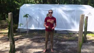 How to grow Dragon Fruit in SWFL  ( part 3 )