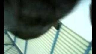 preview picture of video '2o gymnasio Voulas-Geitonas=58-51(part 2)'