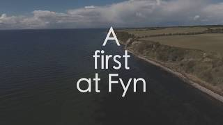The Right Place – Sea Trout Fyn