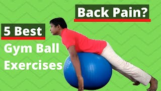 5 Best Ball Exercises For Back Pain (Hindi)