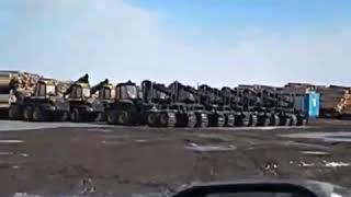 Как валят лес. Машины для вырубки лесов.