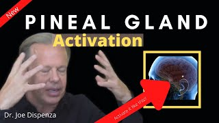 Dr Joe Dispenza (2020) - Pineal Gland Activation