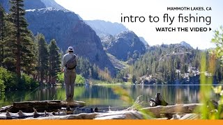 Beginner's Guide to Fly Fishing in the Eastern Sierra
