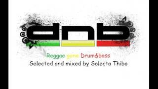 Reggae Gone Drum & Bass - Jungle Mix By Selecta Thibo
