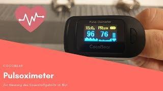 [German Review] Sauerstoffgehalt im Blut messen ! CocoBear Pulsoximeter