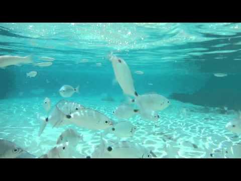 Bagno a Cala Sabina ( Asinara)