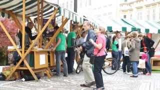 Ljubljana podjetniško mesto 2014 - PVSP predstavitev