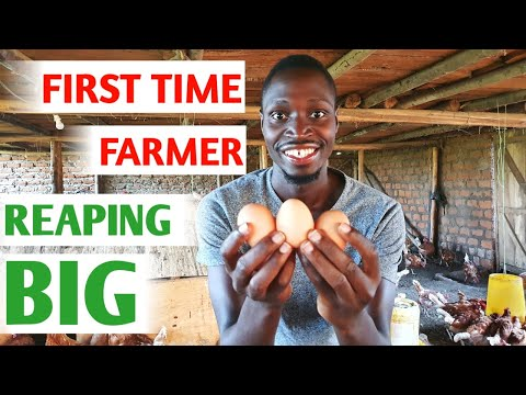 , title : 'How I Started a Poultry Farm With Little Money and No Experience | My Success Story