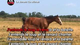 La Jument De Michao Karaoké - Nolwenn Leroy*