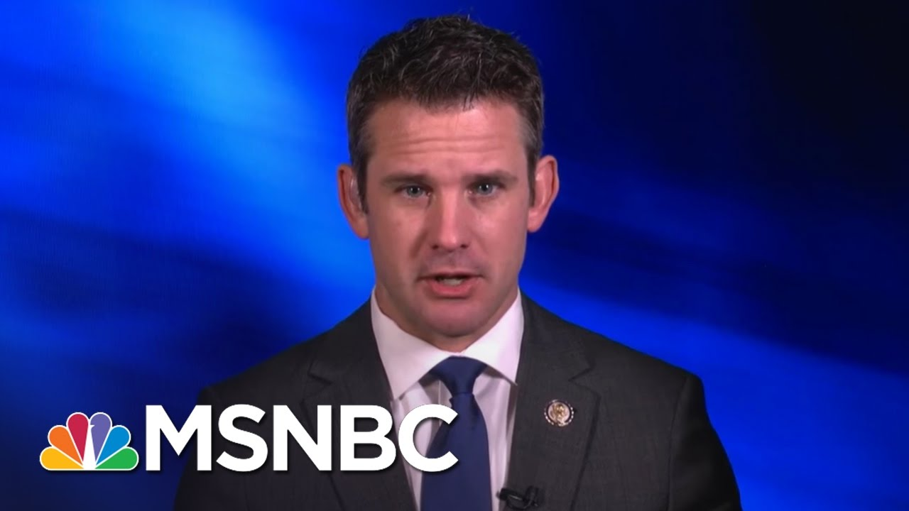 GOP Rep. Adam Kinzinger: Freedom Caucus Owns The Loss Of Health Care Bill | MSNBC thumbnail