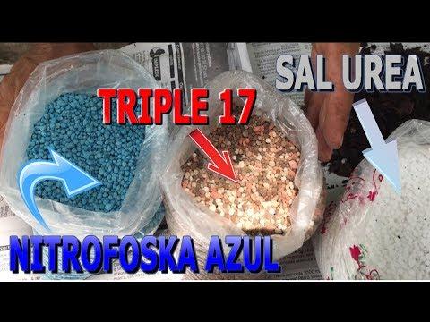Uso de fertilizante sal urea, nitrofoska azul, triple 17 para embellecer las plantas