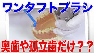 ワンタフトブラシは奥歯や孤立歯専用?