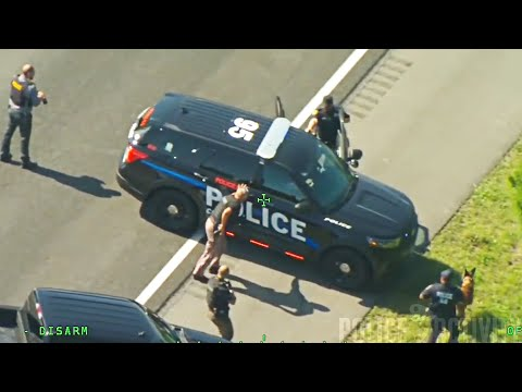 Florida Man Steals Two Police Cars During Chase