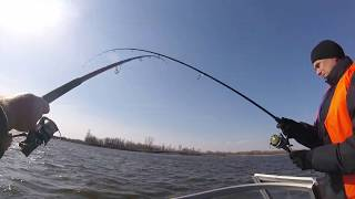 Весенняя рыбалка на сома в астрахани