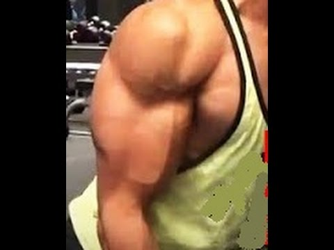 Video cara cepat mendapatkan otot lengan yang besar