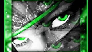 40 Below Summer - Endorphins