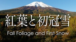 絶景空撮 富士山の紅葉と初冠雪 | Aerial view of fall foliage and the first snow on Mt.Fuji