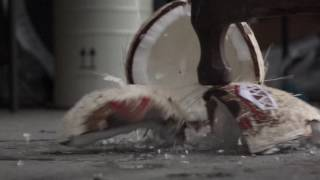 Disney Moana Kakamora Coconut Pirates Frozen in Liquid Nitrogen