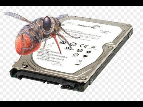 Муха ЦЦ или ошибка CC ver.2.0 жесткого диска Seagate 2.5 для ноутбука. Ремонтируем винт