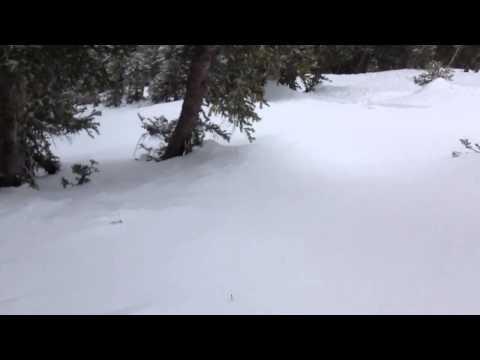 Música Avalanche