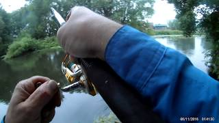Ловля щуки в англии