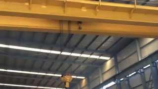 Double Girder EOT Crane From DGCRANE