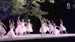 D Todo - Ballet Lago de los cisnes
