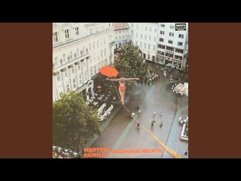 Neoton Família - Védőháló Nélkül LP - VG+/ VG+ (lemez/borító) magyar bakelit lemez - 1500 Ft - (meghosszabbítva: 2961156209) Kép