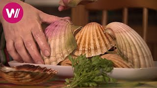 Galicia - For All who Love Seafood (Spain)   What's cookin'