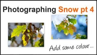 Snow photography Pt. 4
