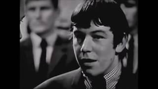 The Animals - Baby Let Me Take You Home  *(RSG!)