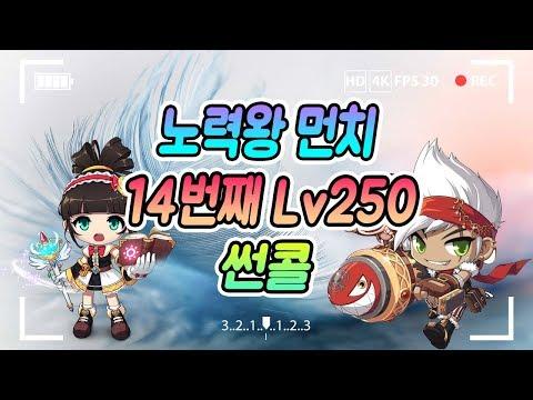 썬콜 14번째 Lv.250 도전 (5일차)/스카니아,사냥,육성 먼치 (메이플스토리)