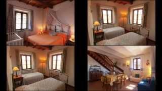 preview picture of video 'Agriturismo I MORI GELSI, Torgiano, Umbria'