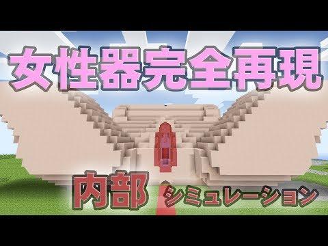 【マインクラフト】女性器内部シミュレーション【医学・芸術】