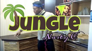 NASTY C JUNGLE Best Dance Video VIRAL Kida The Great Kitchen Type Freestyle || Russia || 2019 ||